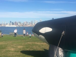 Orca Half Marathon @ Don Armeni Park | Seattle | Washington | United States